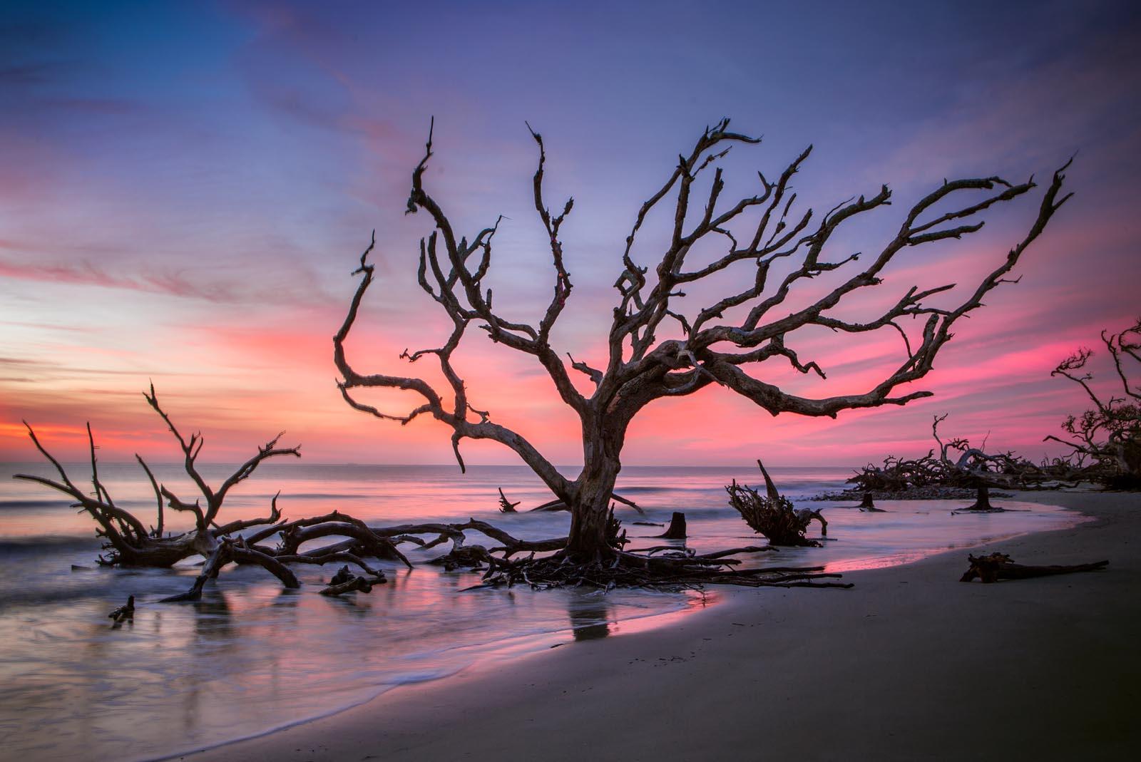 boneyard beach on Jekyll