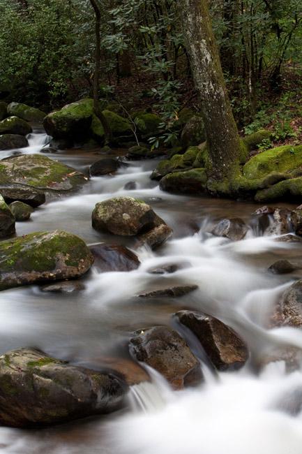 Middle Saluda River copy