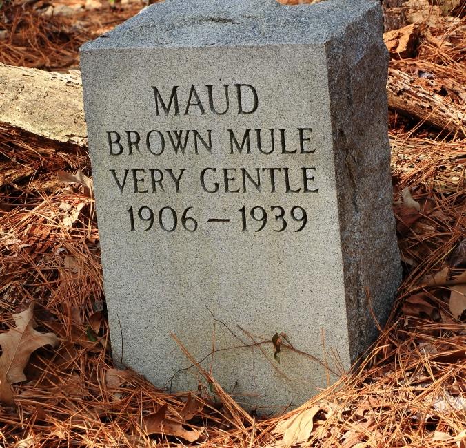 Maud 1